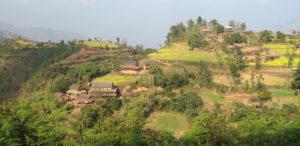 hotel jungle vistachepang-hill-trek