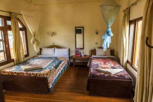 hotel-jungle-vista-4
